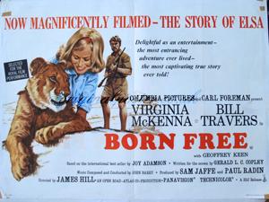 born free original vintage film poster
